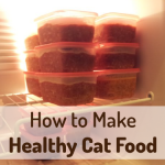 homemade-cat-food
