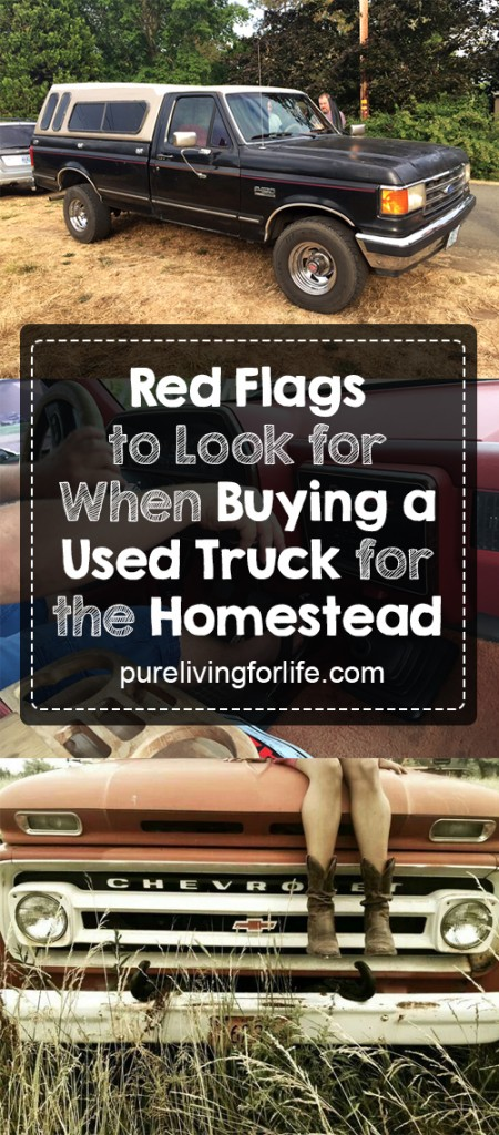 buying-a-used-truck-for-homestead