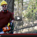 tree-felling-fi