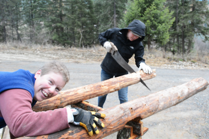 Anna and I cutting posts for the winter addition!