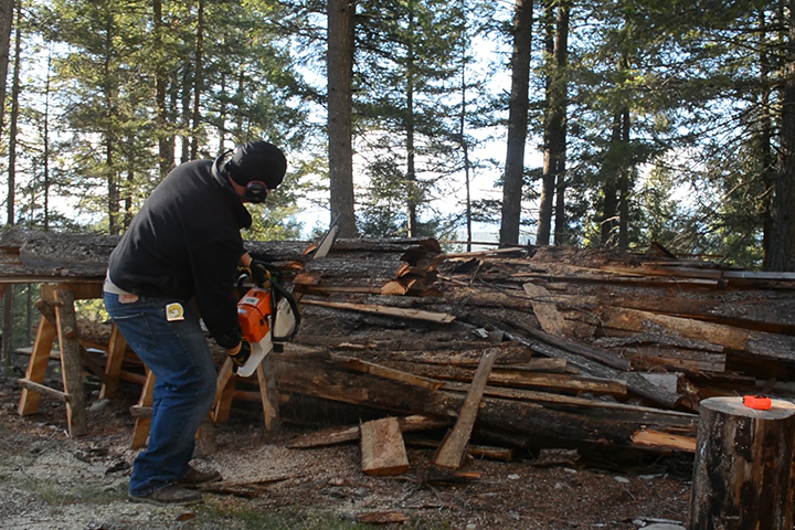 gathering firewood for off grid homestead