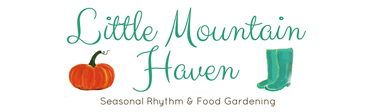 little mountain haven blog