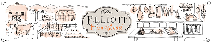 the elliott homestead