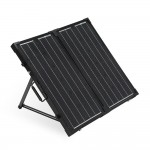renogy 600 watt folding solar panels off grid