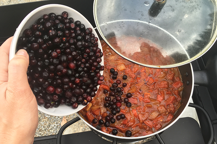 Huckleberry BBQ sauce! In go the huckleberries... yum!
