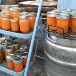 The Day of Canned Apricots & Apricot Initiation