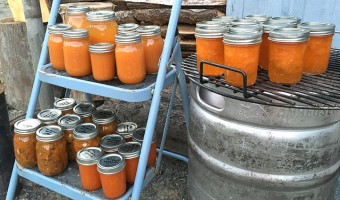 canned apricot recipes