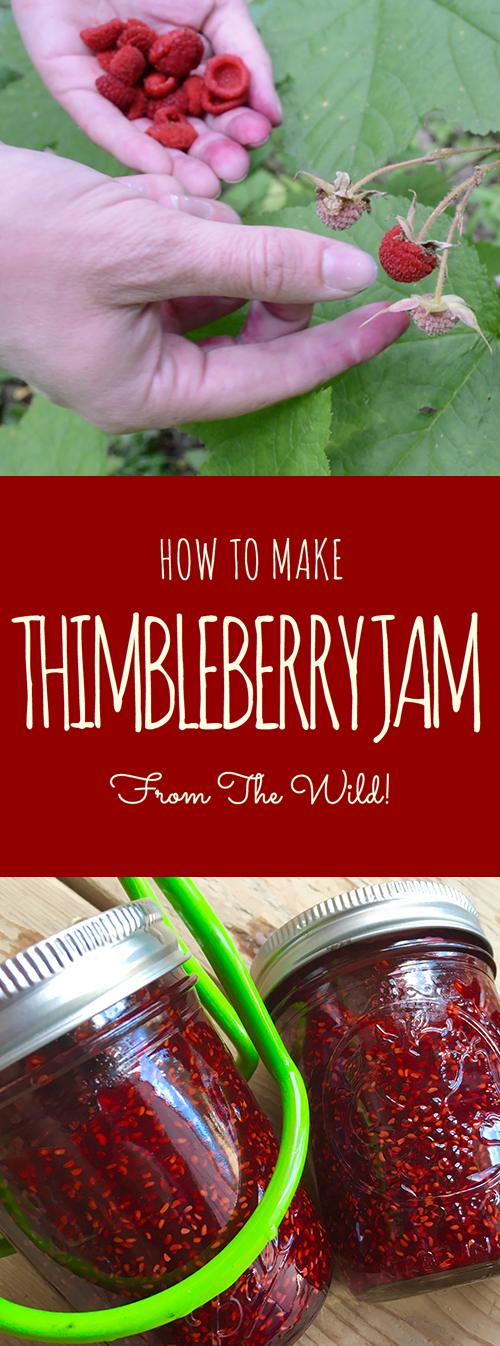 "Not known by most people, the thimbleberry is a common, edible wild fruit in North America that fruits in the middle of summer. Follow this recipe to turn those lovely red ""caps"" into a beautiful, sugary jam to have in your pantry! #thimbleberry #recipe #thimbleberries #jam #canning"