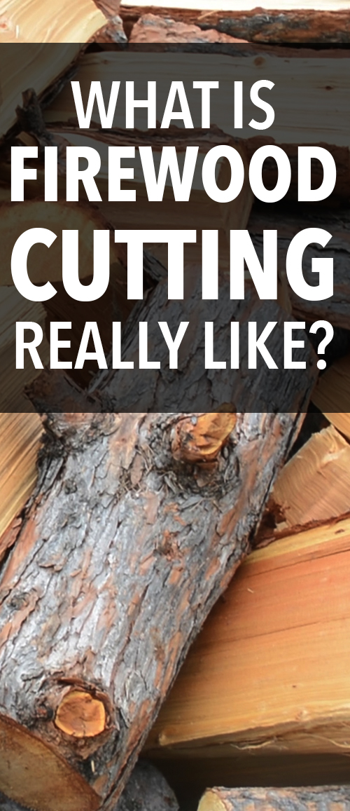 What does cutting firewood REALLY look like? The honest reality? Take a look from those that live off the grid! #homestead #homesteading #offthegrid