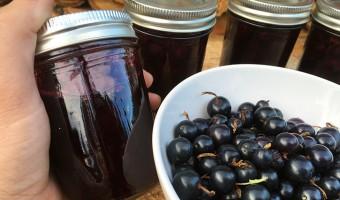 organic fruit preserves
