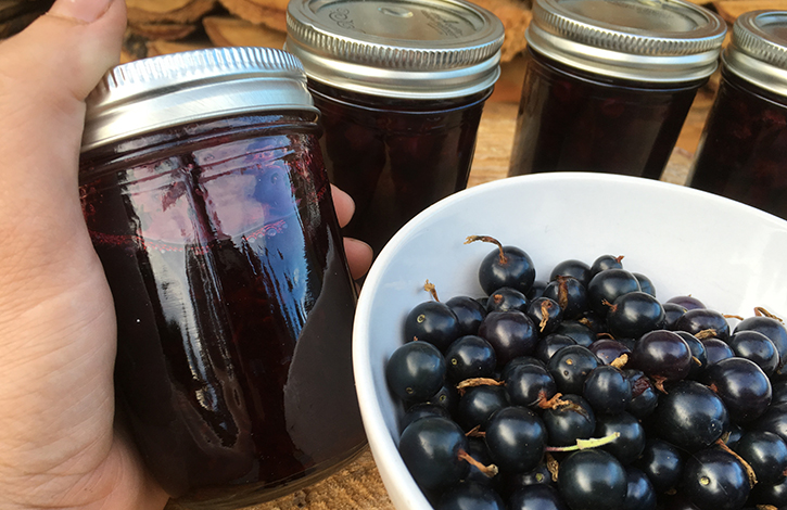 organic fruit preserves