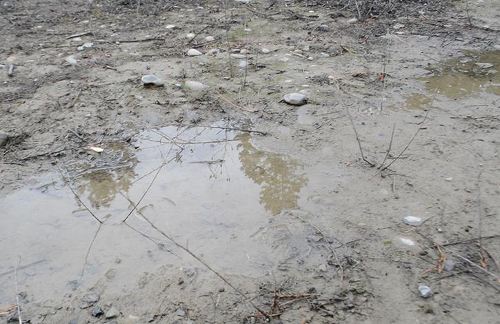 muddy-driveway
