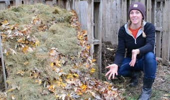 composting 101 - how to start a compost pile